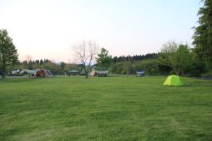 服掛松キャンプ場の様子